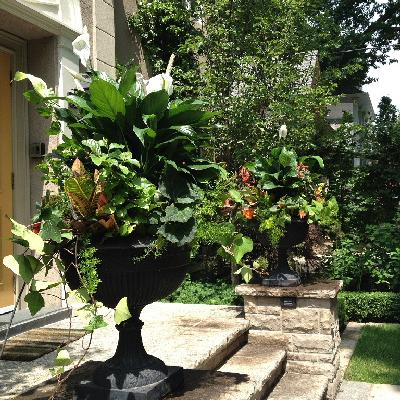Tropical Summer Urns Image
